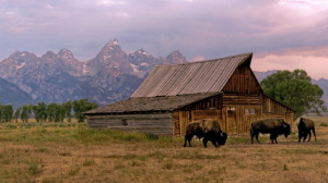 Book Your Jackson Hole Vacation